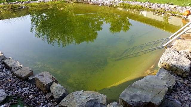 klares Teichwasser, Teichreinigen ohne Chemie
