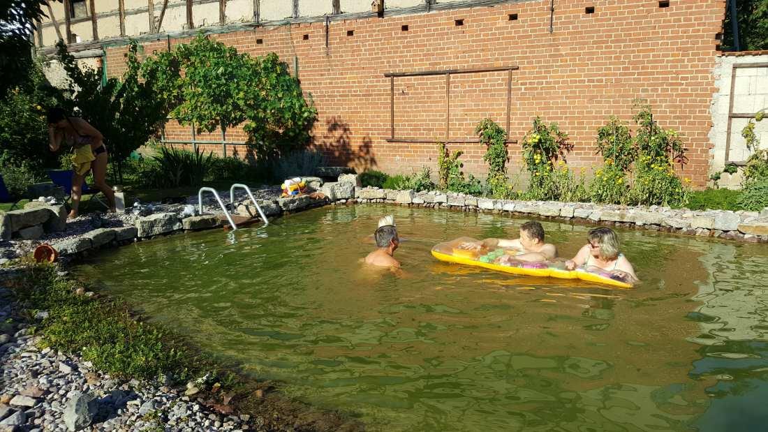 Teich reinigen | Schwimmteich
